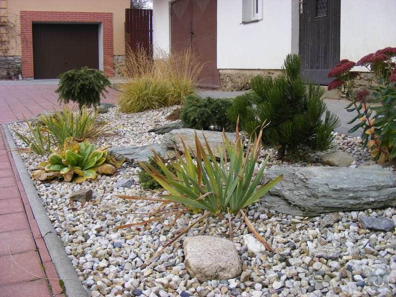 Návrh a realizace zahrady u rodinného domu: srpen_-_zari_2010_429