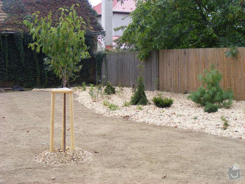 Návrh a realizace zahrady u rodinného domu: srpen_zari2009_118