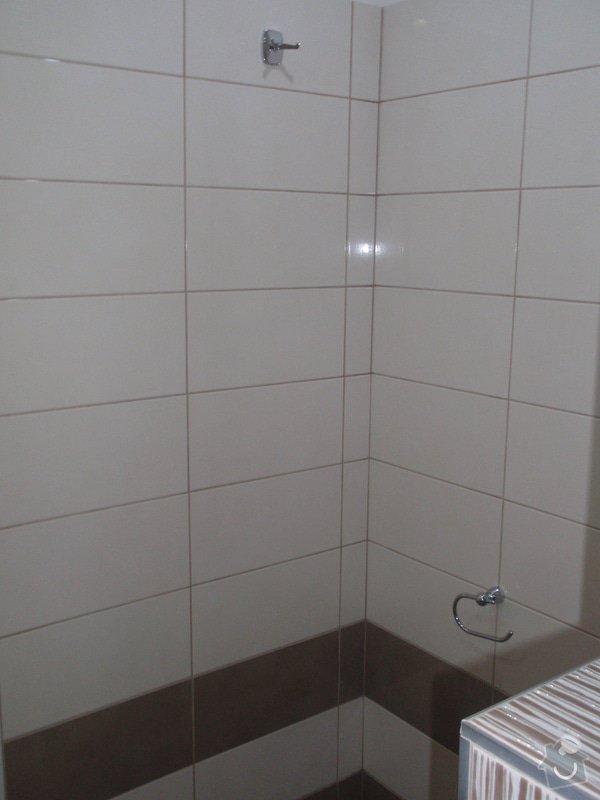 Rekontrukce bytového jádra : P1141067