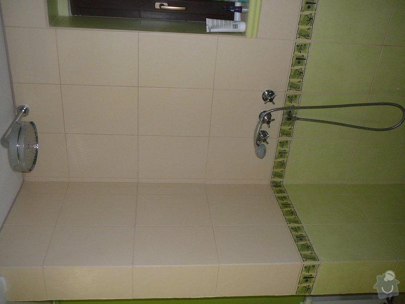 Koupelna : P1020920