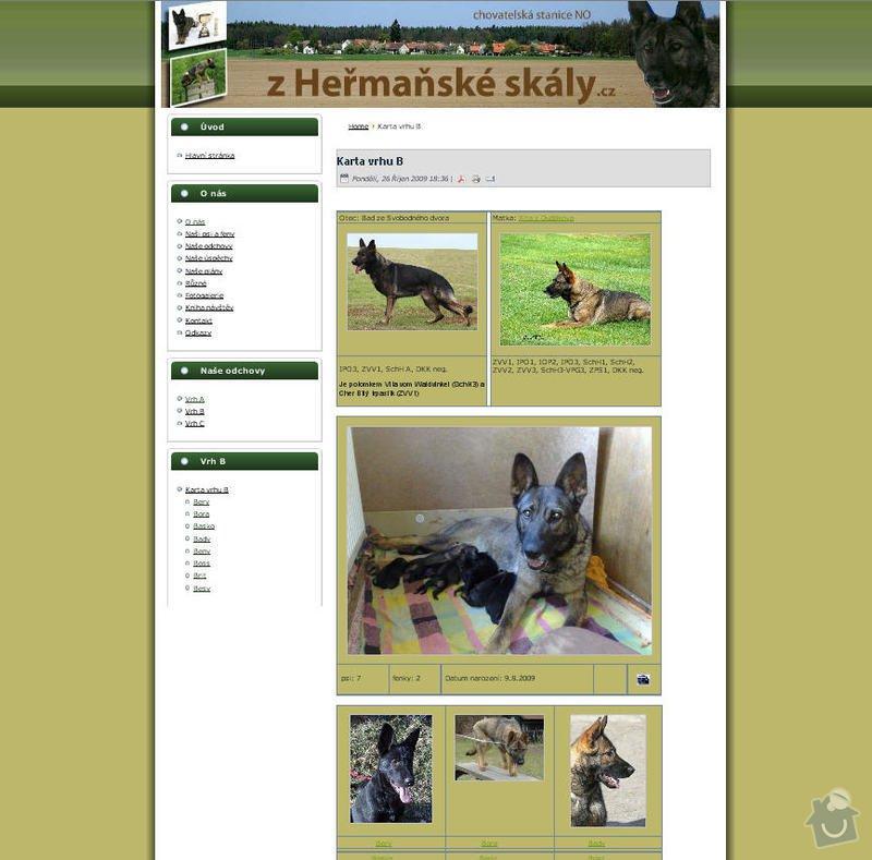 Vytvoření internetových stránek pro CHS Z heřmaňské skály: 9