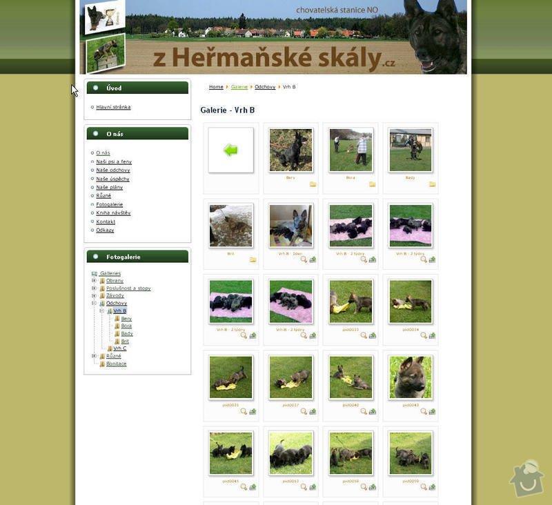 Vytvoření internetových stránek pro CHS Z heřmaňské skály: 6