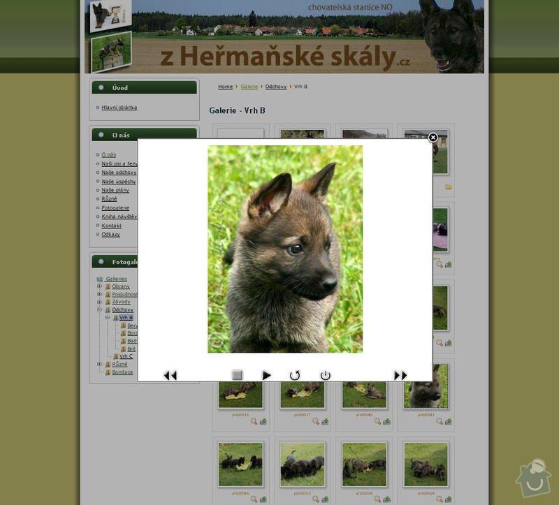 Vytvoření internetových stránek pro CHS Z heřmaňské skály: 7