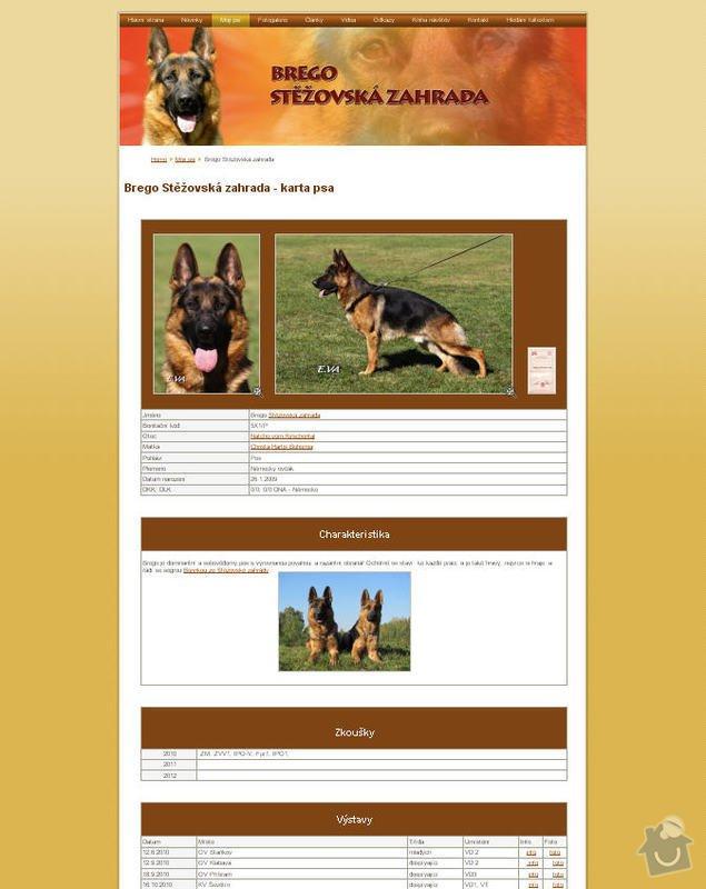 Vytvoření internetových stránek pro majitelku chovného psa: 3