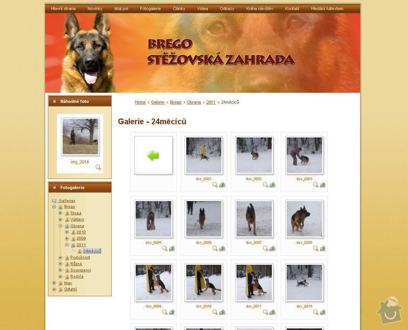Vytvoření internetových stránek pro majitelku chovného psa: 4