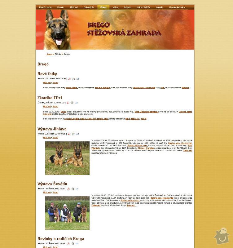 Vytvoření internetových stránek pro majitelku chovného psa: 5
