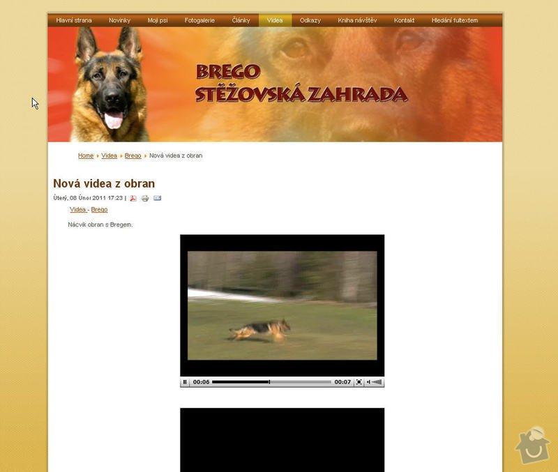 Vytvoření internetových stránek pro majitelku chovného psa: 6