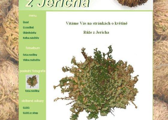Tvorba 4 www stránek