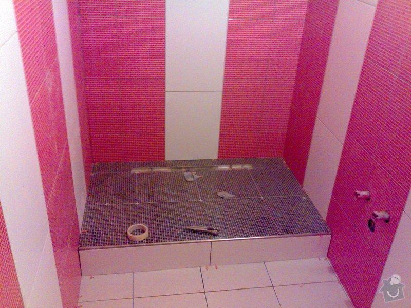 Rekonstrukce bytového jádra , chodby a kuchyně: 13022010549