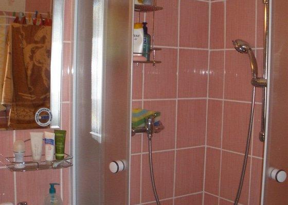 Rekonstrukce koupelny WC