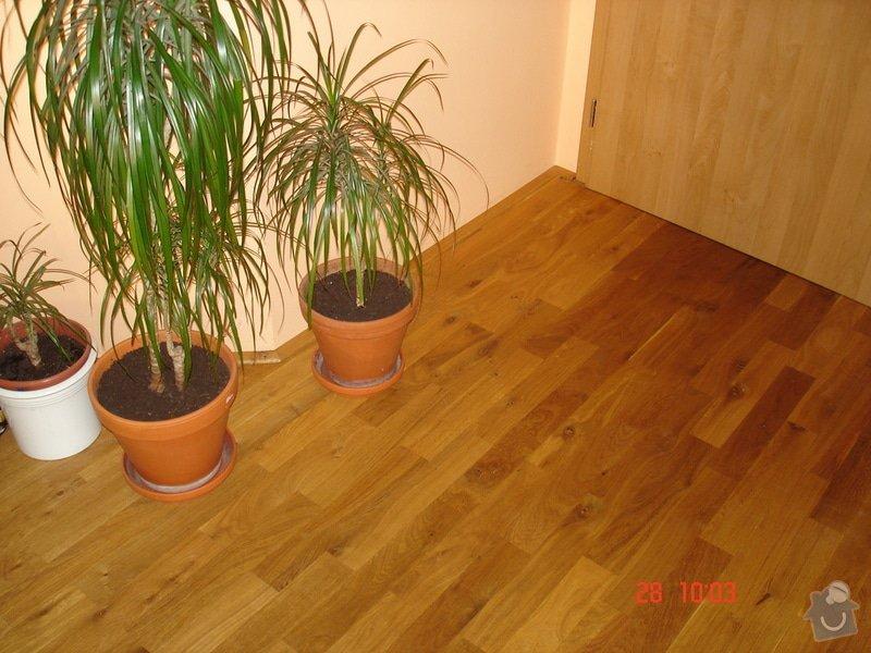 Broušení a stěrkování podkladu,pokládka parket a vinylové podlahy: DSC03069