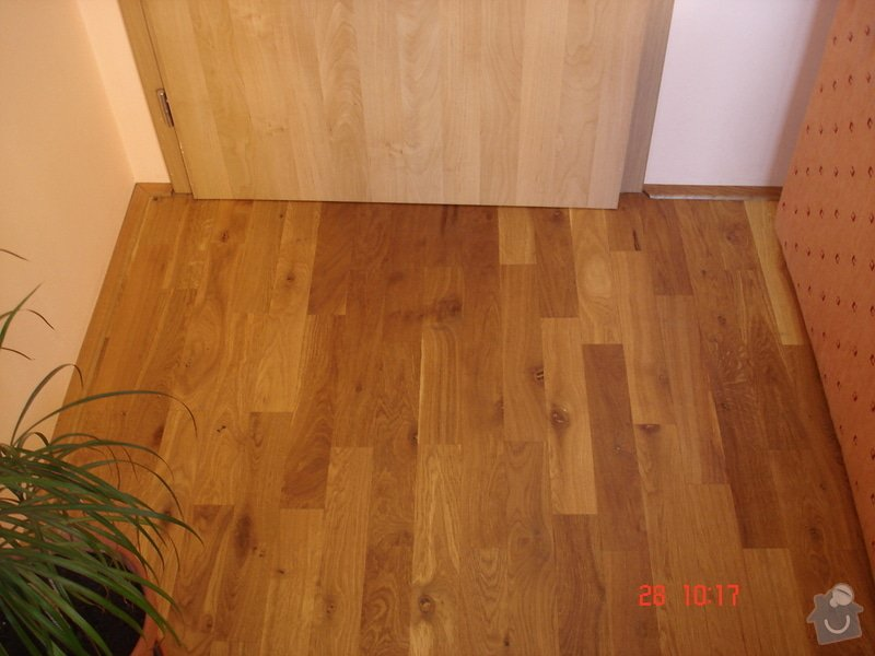 Broušení a stěrkování podkladu,pokládka parket a vinylové podlahy: DSC03075