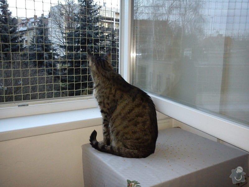 Síť pro kočku: DSC00068