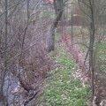 Oprava plotu temer podemleteho vodou viz foto imag0150