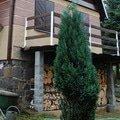 Pristresek pro drevo okounov2 01