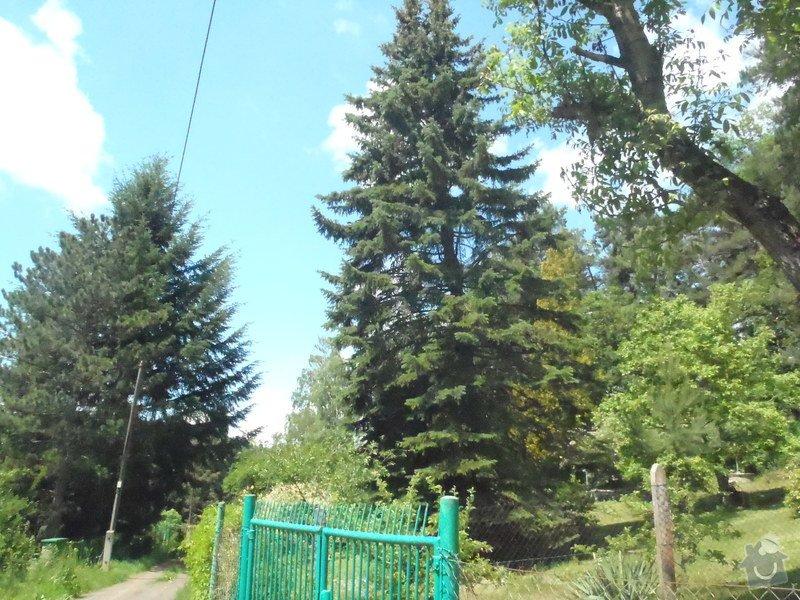 Kácení ohrožujicího stromů: P6070167