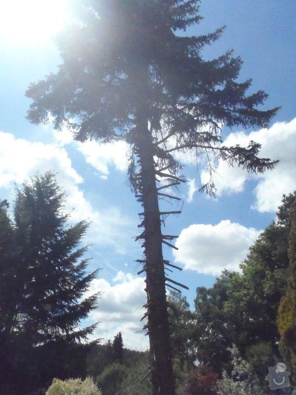 Kácení ohrožujicího stromů: P6070175