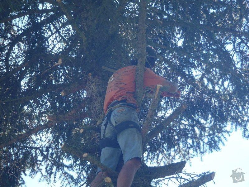 Kácení ohrožujicího stromů: P6070179