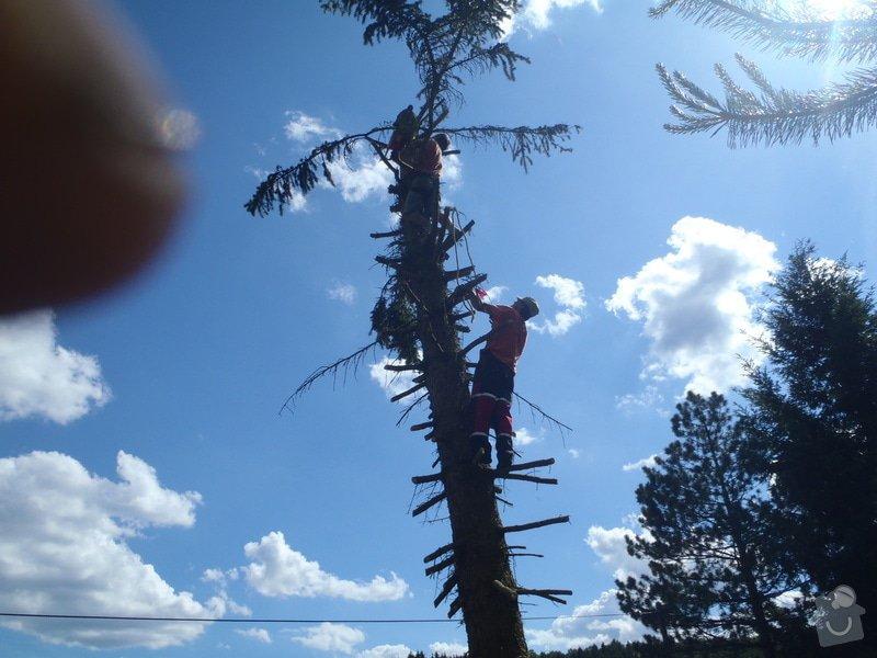 Kácení ohrožujicího stromů: P6070180