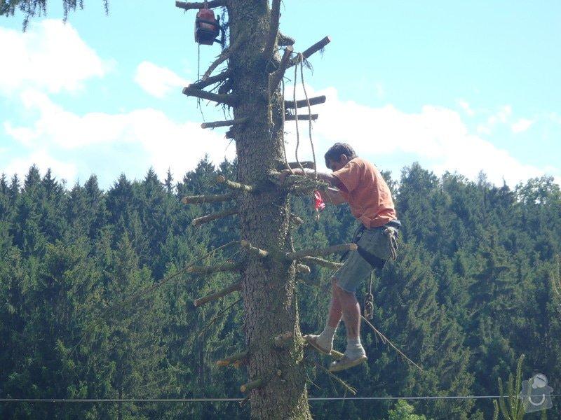 Kácení ohrožujicího stromů: P6070182