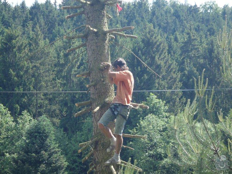 Kácení ohrožujicího stromů: P6070183