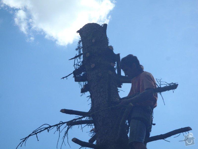 Kácení ohrožujicího stromů: P6070187