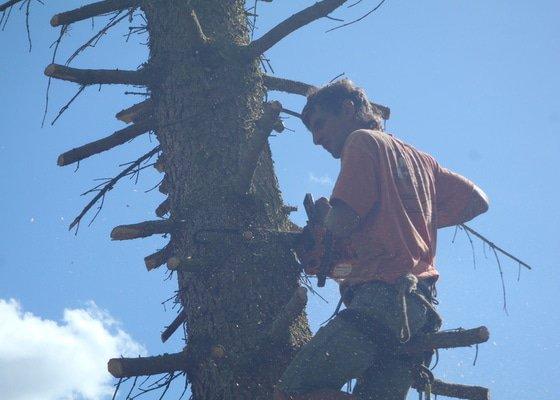 Kácení ohrožujicího stromů