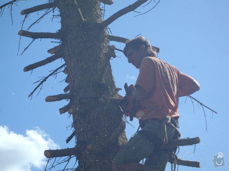 Kácení ohrožujicího stromů: P6070188