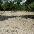 Zalozeni travniku drobne terenni upravy p1070462