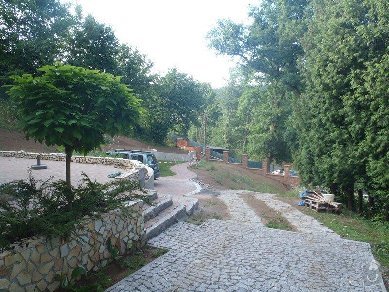 Postupná kompletace zahrady: P6250399