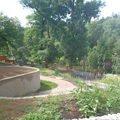 Postupna kompletace zahrady p7100733
