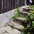 Zednicke prace venkovni dlazba domek l to 2008 012