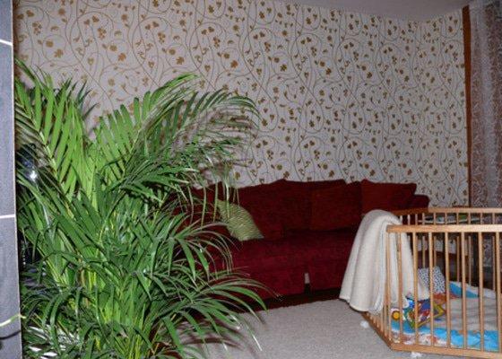 Malování domu, tapetování a další práce