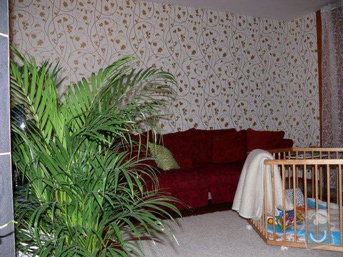Malování domu, tapetování a další práce: P1130385