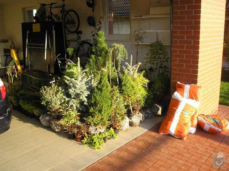 Návrh a osázení okrasné zahrady: Zahrada_1