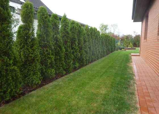 Návrh a osázení okrasné zahrady