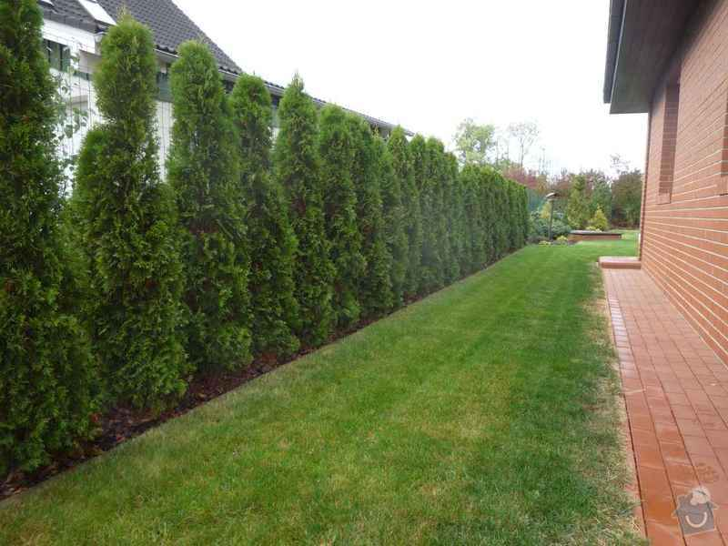 Návrh a osázení okrasné zahrady: Zahrada_5