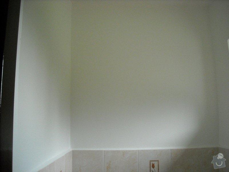 Rekonstrukce WC: image1