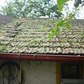 Oprava ponicenych strech obr2 1