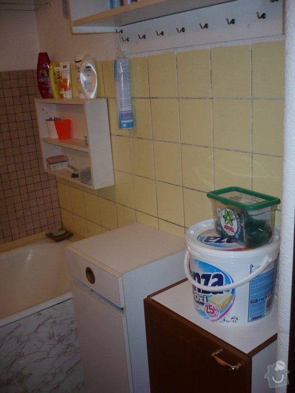 Rekonstrukce koupelny: P1020144