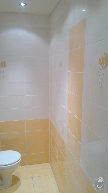 Rekonstrukce bytového jadra byt 1+1 Brno: 21042011819