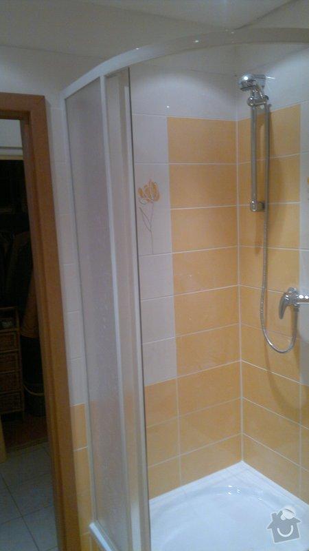Rekonstrukce bytového jadra byt 1+1 Brno: 21042011823