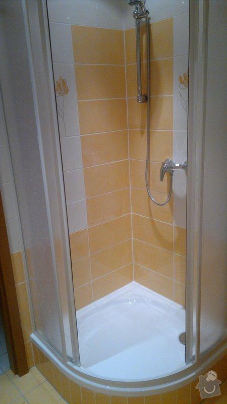 Rekonstrukce bytového jadra byt 1+1 Brno: 21042011825