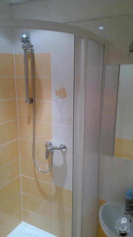 Rekonstrukce bytového jadra byt 1+1 Brno: 21042011826