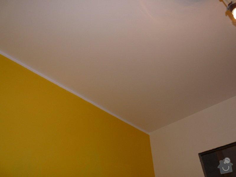 Sádrokartonové podhledy: P1090898