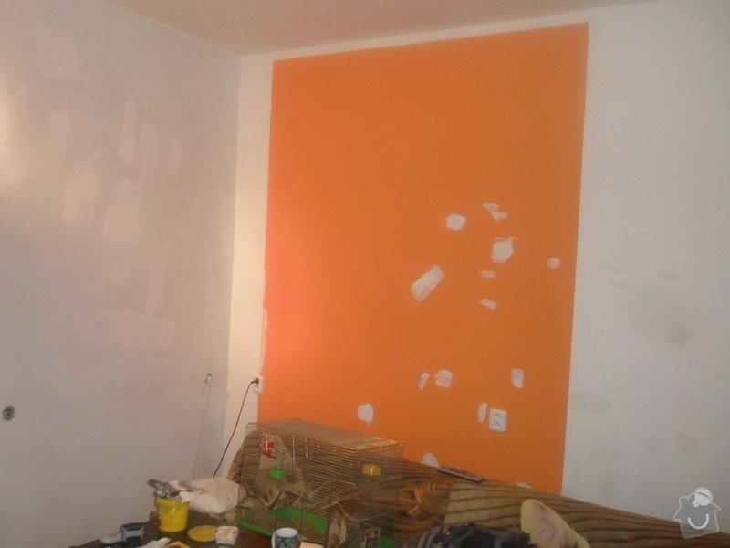 Malba bytu s výskytem vlhka a plísní: 26