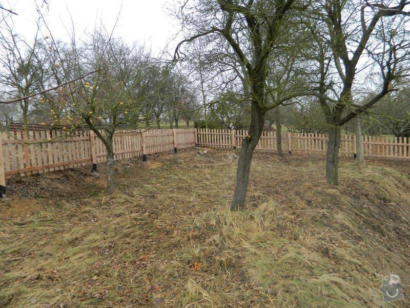 Dřevený chalupářský plot : DSCN1206