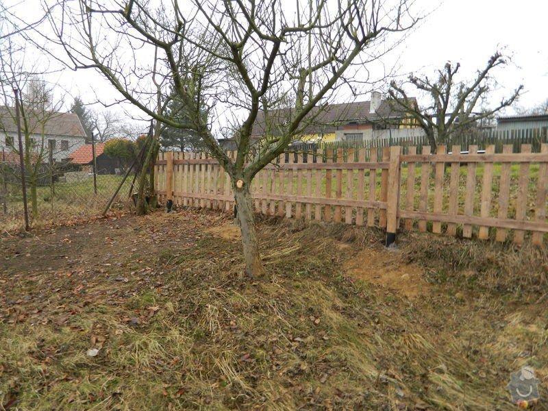 Dřevený chalupářský plot : DSCN1208