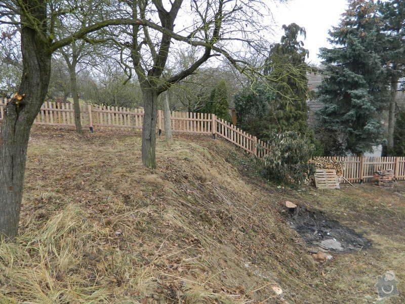 Dřevený chalupářský plot : DSCN1210