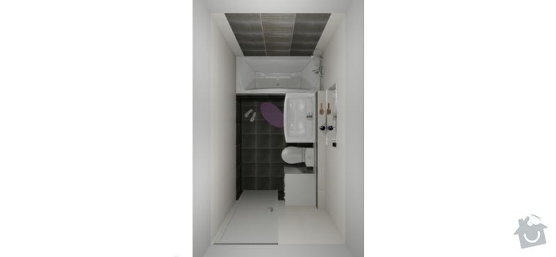Rekonstrukce koupelny cca 5m2: koupelna_vizualizace_3
